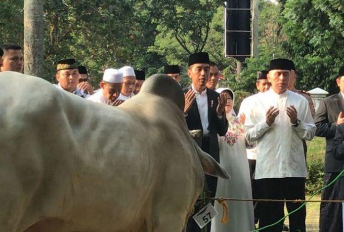 Presiden Joko Widodo sampaikan pesan moral