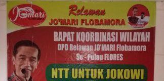 Profil Singkat Relawan Jo'Mari Flobamora