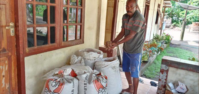 Wao!!! 100 Kilogram Benih Kacang Tanah Tanpa Label Diisi di Karung Pakan Ayam