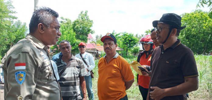 Gerilia Ulat Grayak, Kini Serang 2.066 Hektar Jagung