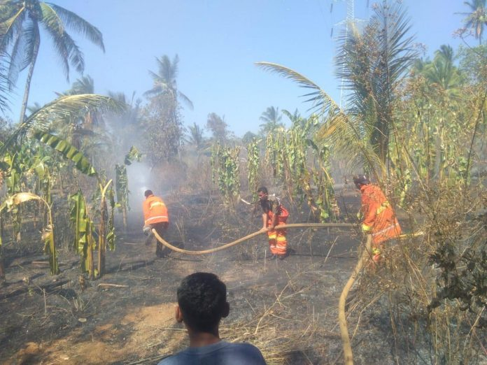 Lahan Kebun 5 Hektar Terbakar, Nyaris Lalap Rumah Warga